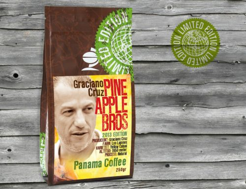 PINEAPPLE BROS – GRACIANO CRUZ